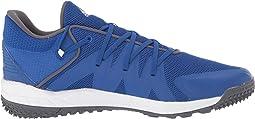 Collegiate Royal/Footwear White/Grey Five