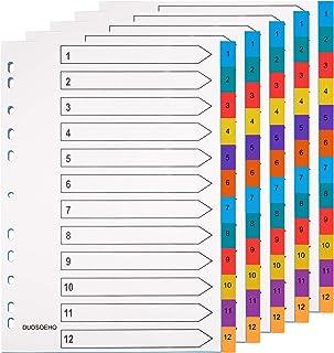 Lot de 5 intercalaires A4 extra larges en mylar multicolore 1 à 12 intercalaires poreux polyvalents