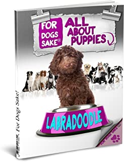 All About Labradoodle Puppies (English Edition)