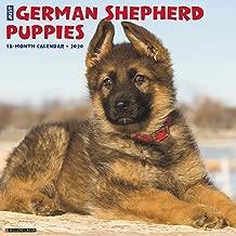 Just German Shepherd Puppies 2020 Wall Calendar (Dog Breed Calendar)