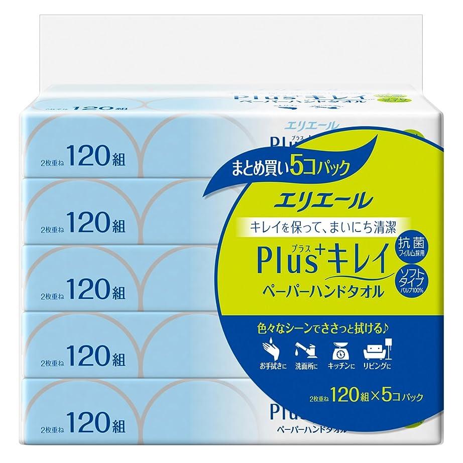 アンティーク指標電圧エリエール ペーパータオル プラスキレイ(Plus+キレイ) 120組×5パック パルプ100% 抗菌フィルム