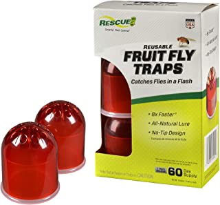 RESCUE Indoor Non-Toxic Reusable Fruit Fly Trap, 2 Pack