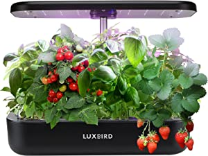 Hydroponics Growing System, Luxbird Indoor Herb Garden Starter Kit with LED Grow Light, Automatic Timer Smart Germination Kit for Kitchen Home Gardening, Height Adjustable (12 Pods)