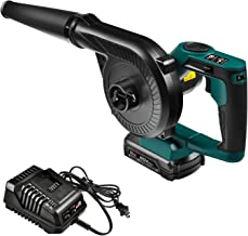Best outdoor blower and vacuum Reviews