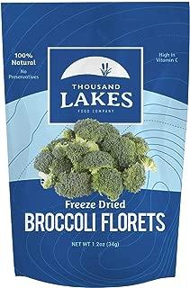 Thousand Lakes Freeze Dried Fruit and Vegetable Snacks - Broccoli Florets 1.2 ounces