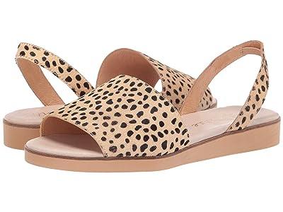 Matisse Easy Flat Sandal (Natural Leopard) Women