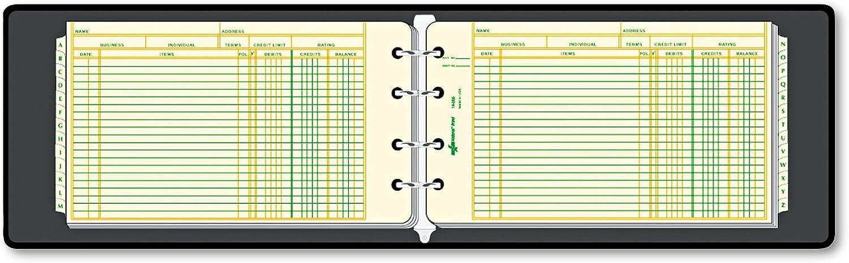 Four-Ring Ledger Binder Kit, Kit, Kit, 100 Ledger Sheets, 8 1 2 x 5 1 2 B00BT31Q1Y   Deutschland  e24877