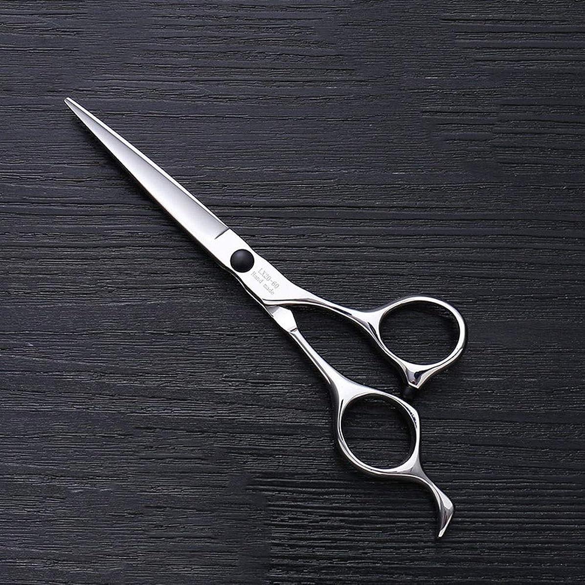 追加する眠る正当な6インチヘアスタイリスト特殊ヘアカットツール、ハイエンドステンレススチールバリカン モデリングツール (色 : Silver)