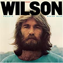 Best dennis wilson river song Reviews