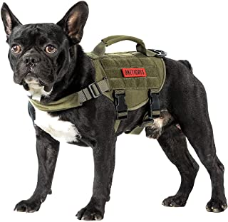 small dog molle vest