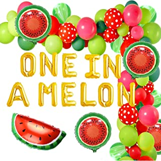 One in a Melon Party Decorations Watermelon 1st Birthday Party Supplies One in a Melon Balloon Garland Arch Kit 91 Pack