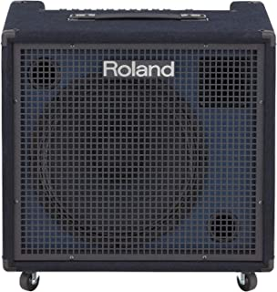 Best roland kc 550 keyboard amplifier Reviews