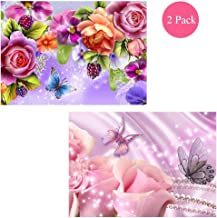 DIY 2 Pack Art Diamond Painting by Number Kits Painting Cross Stitch Full Drill Rhinestone Embroidery Roses and Peony and Butterflies Pattern Arts Craft for Wall Decor