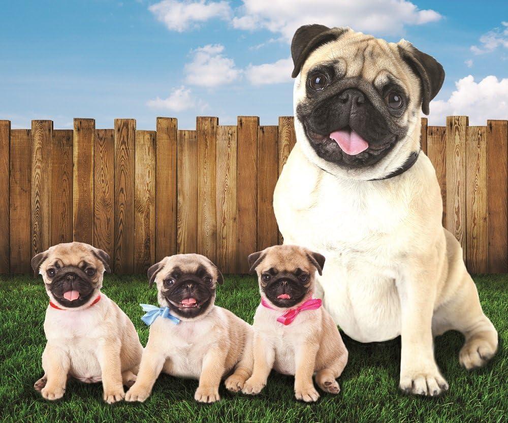 Pug Dogs in The Yard Fleece Throw x 50