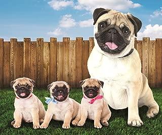 Pug Dogs in The Yard Fleece Throw Blanket 50