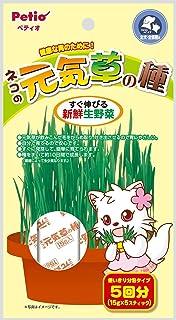 ペティオ ネコの元気草の種15g×5 W32006