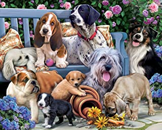 Best dog jigsaw puzzle Reviews
