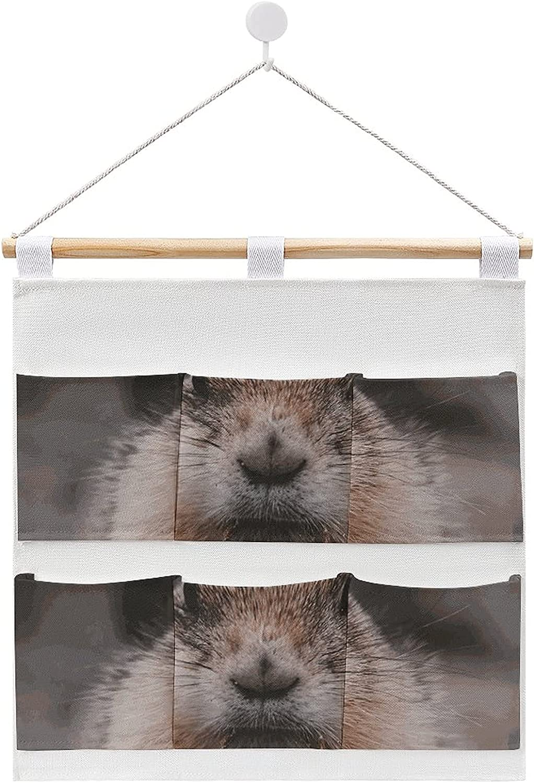 Aleonun Closet Popular standard Now free shipping Wall Hanging Cotton Pat Linen Storage Gopher Bags