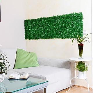 Amazon.es: jardin vertical cuadro