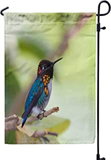 Shorping Welcome Garden Flag, 12x18Inch The Bird in The World Male Bee Hummingbird is a Mellisuga helenae for Holiday and Seasonal Double-Sided Printing Yards Flags