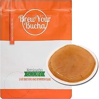 Sponsored Ad - Brew Your Bucha Kombucha Tea SCOBY with starter fluid. (1 SCOBY)