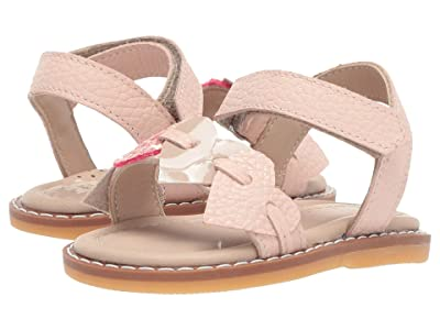 Elephantito Caro Cuore Sandal (Toddler) (Gold) Girls Shoes
