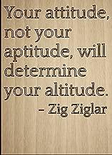 Best your attitude determines your altitude Reviews