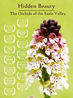 Hidden Beauty - The Orchids of the Saale Valley