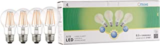 Best led replacement for 100 watt incandescent Reviews