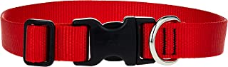 Lupine Dog Collar 12-20, Red, 1 inch