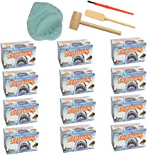 Barry-Owen Co. 12 Pack Shark Jaw Fossil Dig Toy Tools Reveal Mini Animals Or Real Teeth Archaeology Educational for Kids