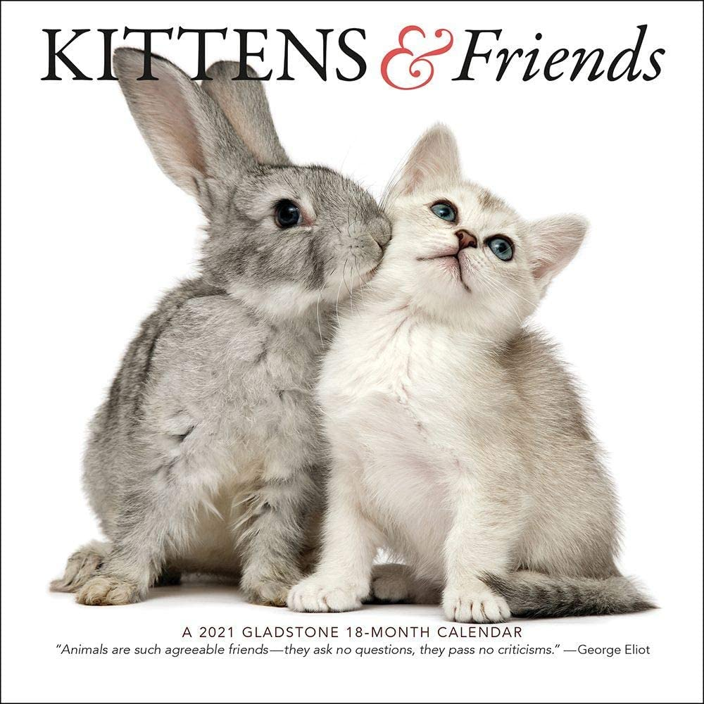 SMALL CHANGES Kittens And Friends Max 69% OFF Calendar 1 Mini EA Memphis Mall 2021