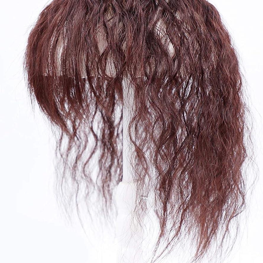 。男やもめ太平洋諸島BOBIDYEE ヘアエクステンションダークブラウンウィッグパーティーかつらで女性のクリップのためのコーンの長い巻き毛 (色 : Dark brown, サイズ : 25cm)