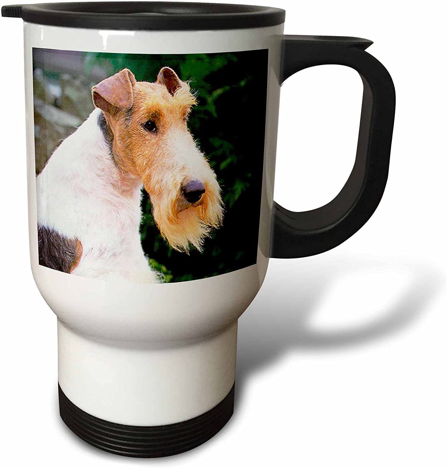 service 3dRose Giant Schnauzer Travel Stainless 14-Ounce Steel Mug Fort Worth Mall