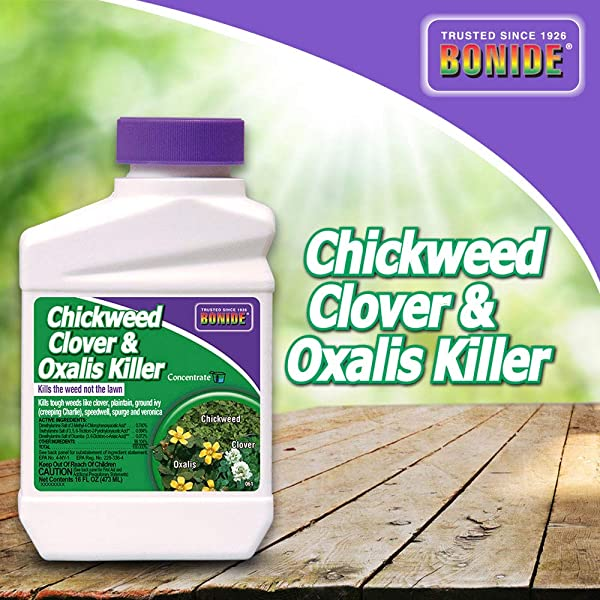 Bonide BND061 Chickweed Clover And Oxalis Weed Killer Concentrate 16 Oz