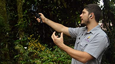 Explore the spectacular world of miniature orchids with an expert at the Monteverde Orchid Garden