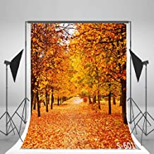 Laeacco Autumn Scenery 3x5ft Vinyl Photography Backdrop Tree and Fall Leaves View 1x1.5m Background Studio Props