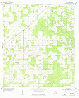 YellowMaps Mayo NE FL topo map, 1:24000 Scale, 7.5 X 7.5 Minute, Historical, 1955, Updated 1977, 27 x 21.9 in