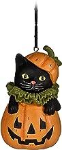 Black Cat in Jack O'Lantern Ornament