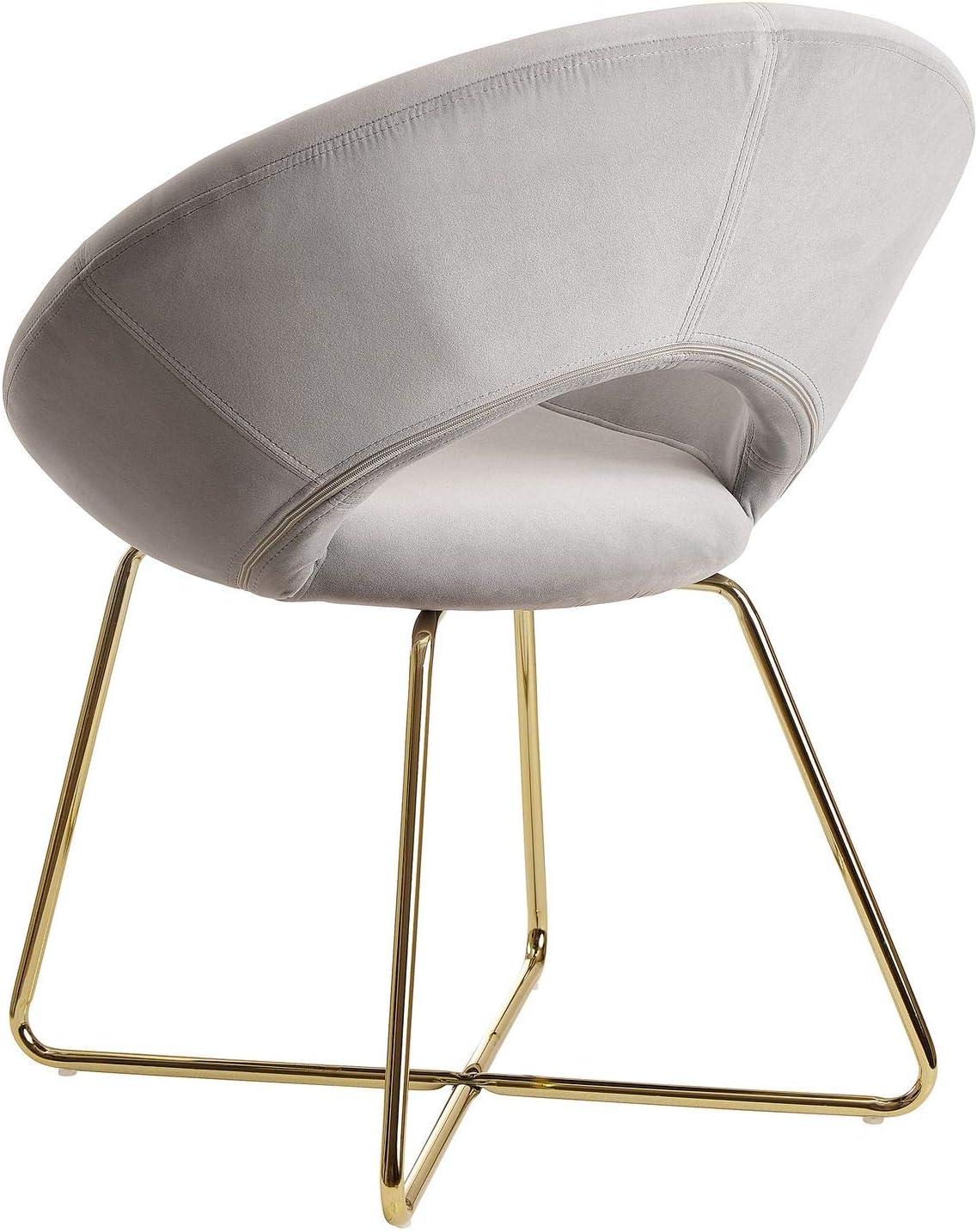 FineBuy Chaise de Salle à Manger Gris Foncé Velours/Métal Design Moderne | Chaise Cuisine avec Dossier | Chaise Rembourrée Capacité de Charge maximale 110 kg Gris Clair
