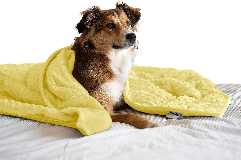 Pawfect Blanket - Weighted Dog Fabric Minky Overseas parallel import regular item Premium San Antonio Mall