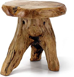 tree stump plant stand