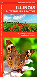 Illinois Butterflies & Moths: A Folding Pocket Guide to Familiar Species (Wildlife and Nature Identification)