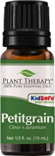 Best fragonia plant therapy Reviews