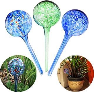 Best blown glass watering globes Reviews