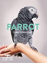 Best documentary about parrots Reviews