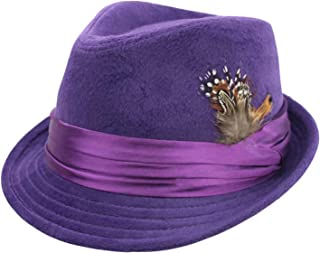 ladies fedora hat with feathers
