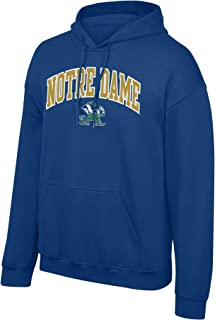 Elite Fan Shop Fan Favorite Team Color Arch Hoodie Sweatshirt