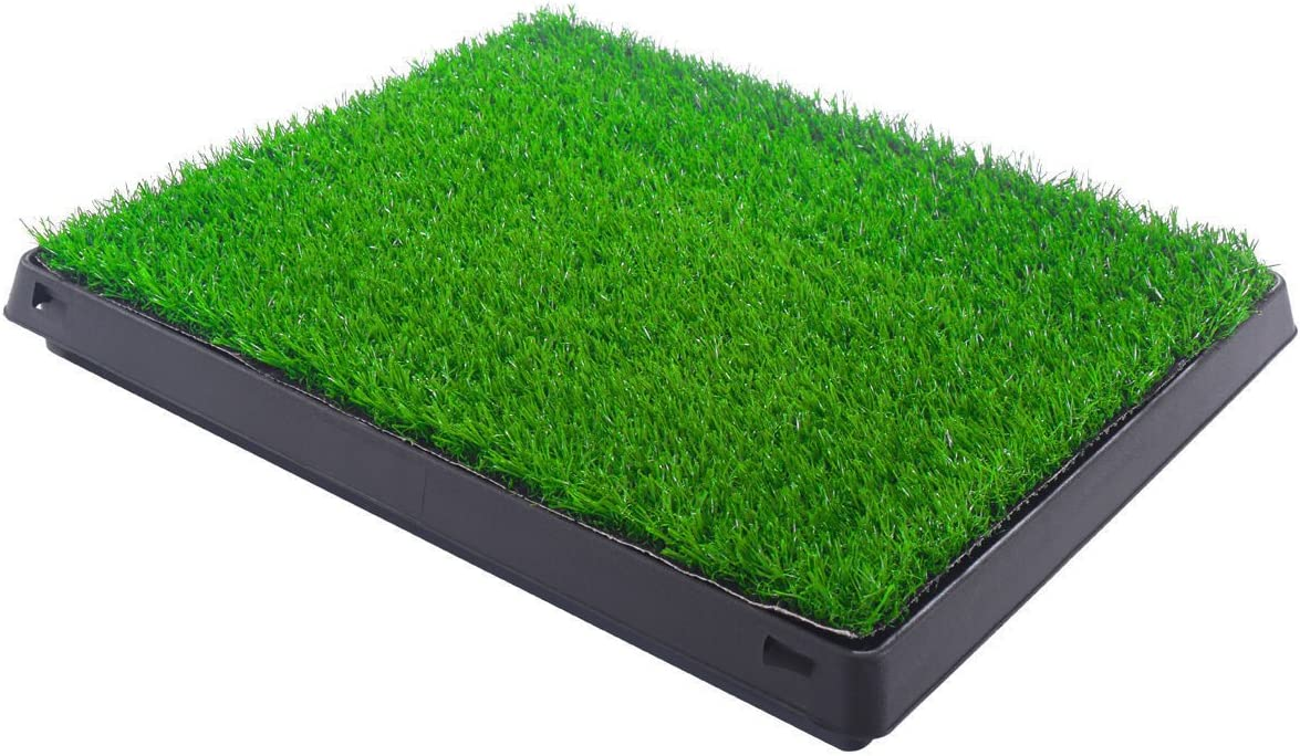 Indoor Puppy Popular shop is the lowest price challenge Washington Mall Dog Pet Potty Training Grass Pad Pee House Tray Mat