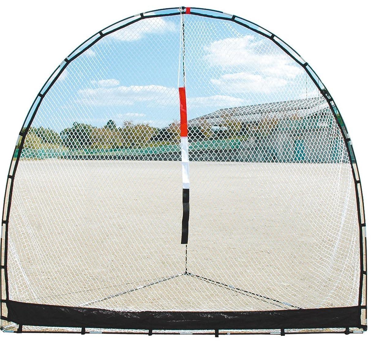 絞るひねくれた硬さUNIX(ユニックス) 野球 練習用品 練習用ネット フォーカスネット BX75-61